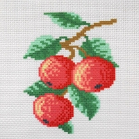 СК1-07 Яблоки. Канва с нанесенным рисунком