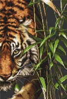 B2356 Тигр. Набор для вышивки крестом