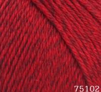 Himalaya Everyday New Tweed 75102