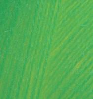 Alize Angora Real 40 - 551 ярко-зеленый